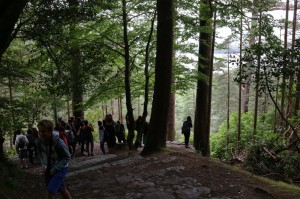 Killarney-woods-lakes